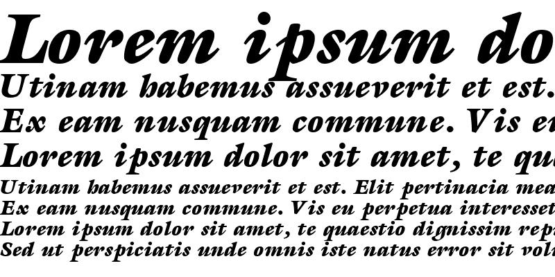 Sample of AcanthusBlackSSK Bold Italic
