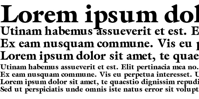 Sample of AcanthusBlackSSK Bold