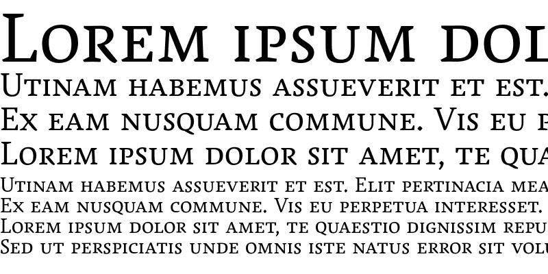 Sample of Agendatype