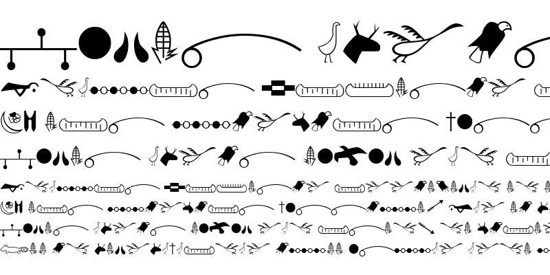 Sample of American Indian