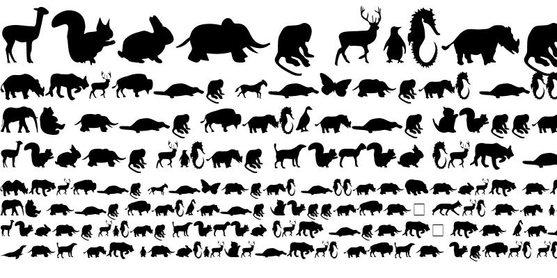 Sample of Animals Medium