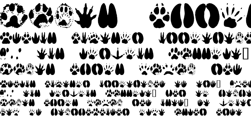 Sample of AnimalTracks