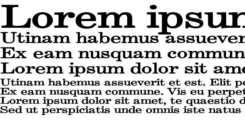 Sample of Annual Extended Bold