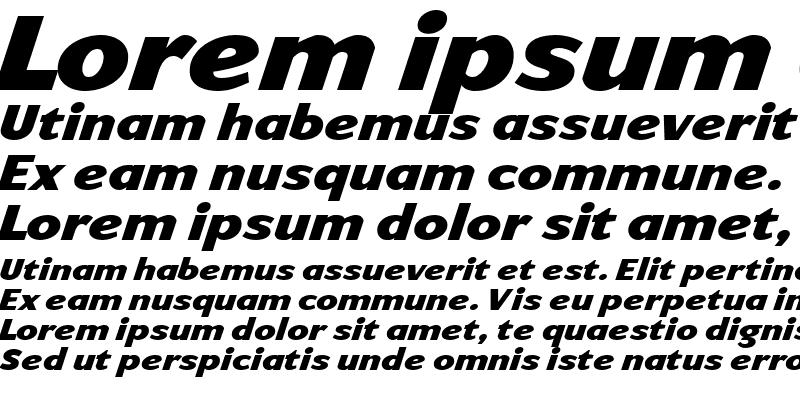 Sample of ArtemiusSans Black TT Regular Italic