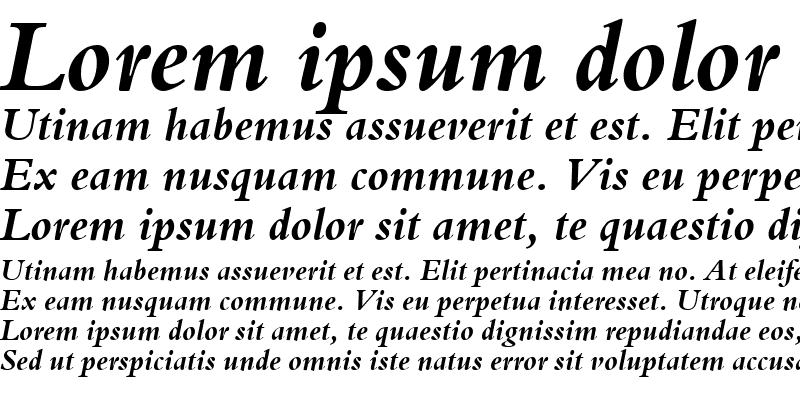 Sample of Bergamo Bold Italic