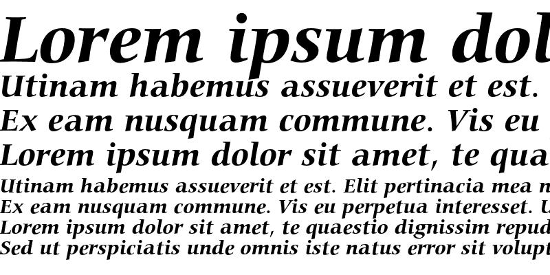 Sample of Bitstream Carmina Bold Italic