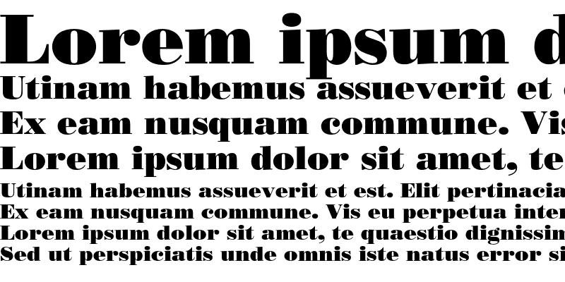 Sample of Bodoni Poster