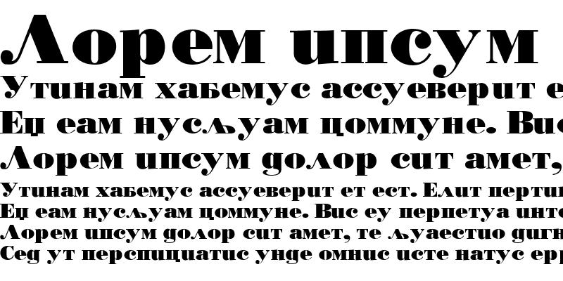 Sample of Bodoni PosterD&DCirilica Black