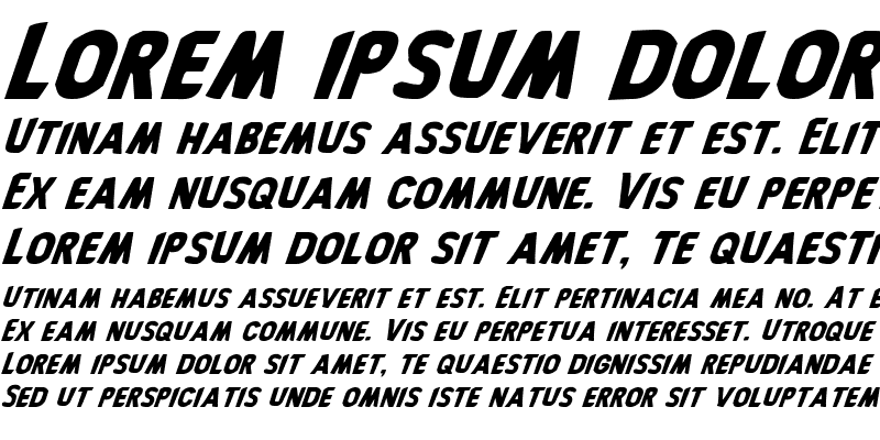 Sample of Bronic Italic
