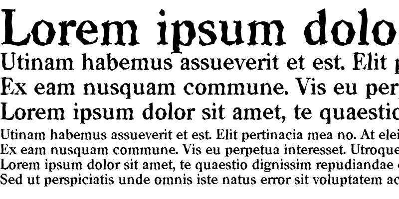 Sample of CasadRandom Bold