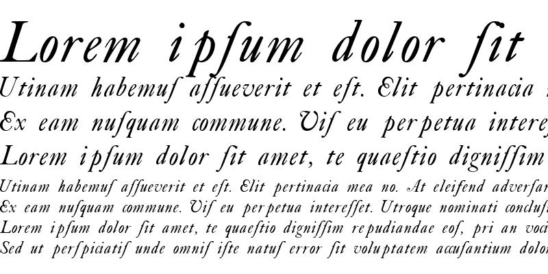 Sample of Caslon Swash Italic WF