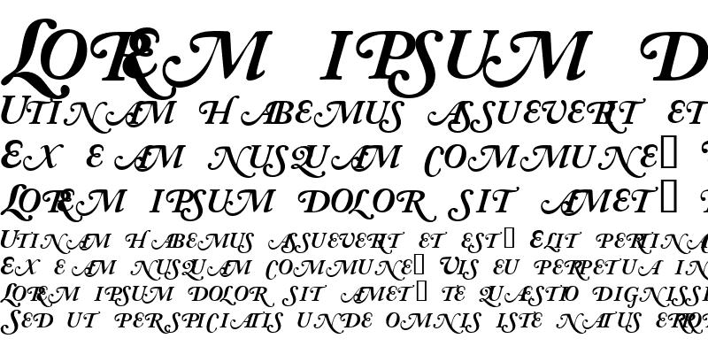 Sample of CaslonSwashBlackSCapsSSK Italic