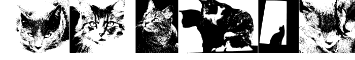 Preview of CatBats Regular