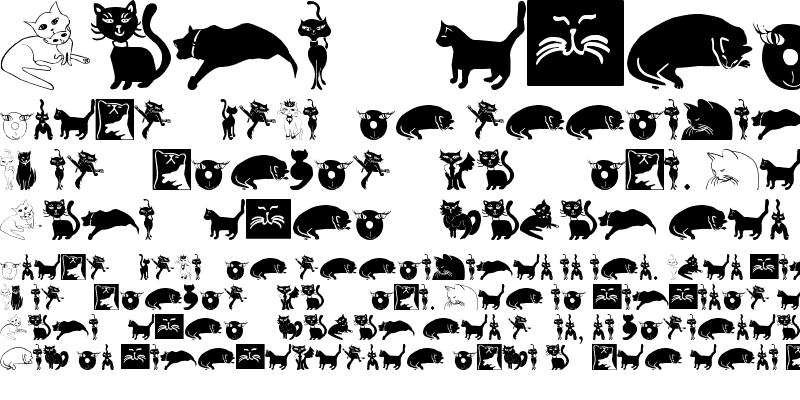 Sample of CatCrypt Regular