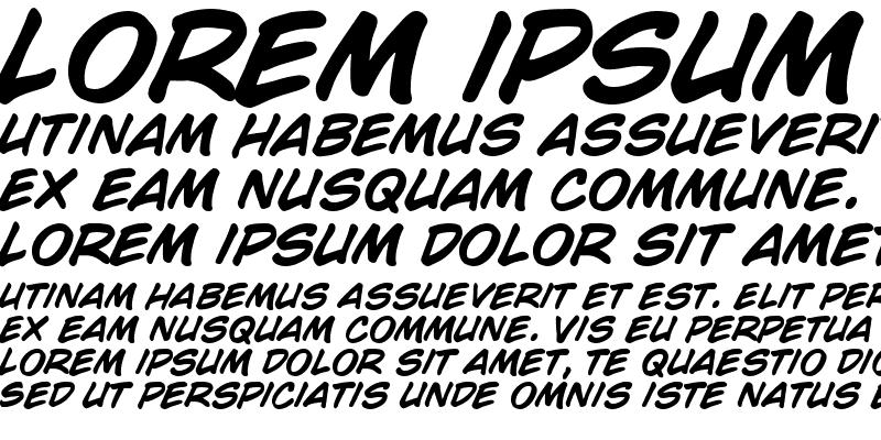 Sample of CC Wild Words Bold Italic