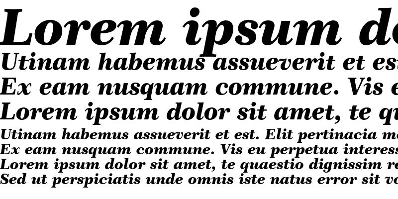 Sample of Century 751 Black Italic
