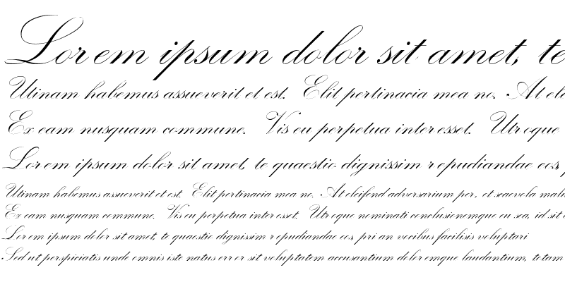 Sample of Check Quill Script Ssk