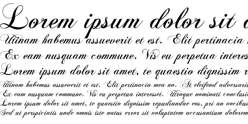 Sample of Chopin Script Regular