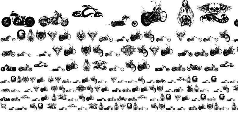 Sample of choppersforlife Regular