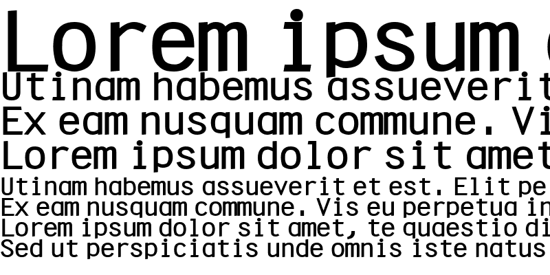 Sample of CleanWide Bold