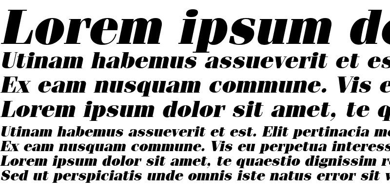 Sample of Compendium Black SSi