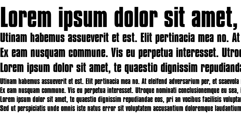 Sample of Compressed Bold