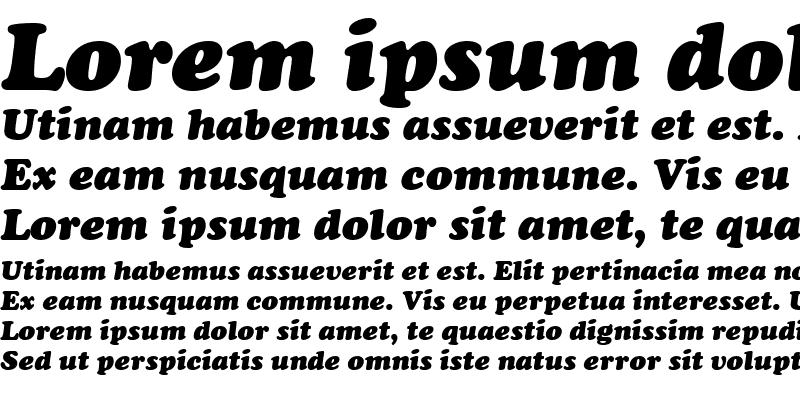 Sample of Cooper Becker Black Italic
