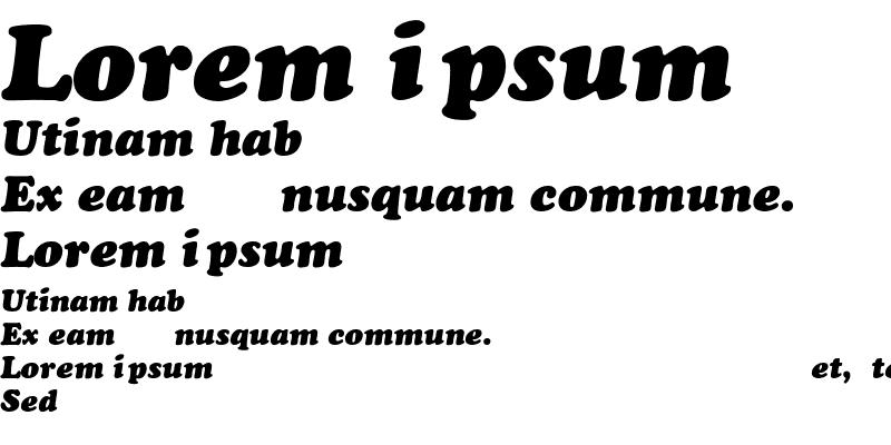 Sample of Cooper-Heavy-Italic
