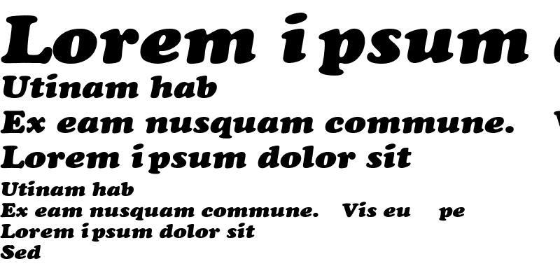 Sample of CooperExt-Heavy-Italic