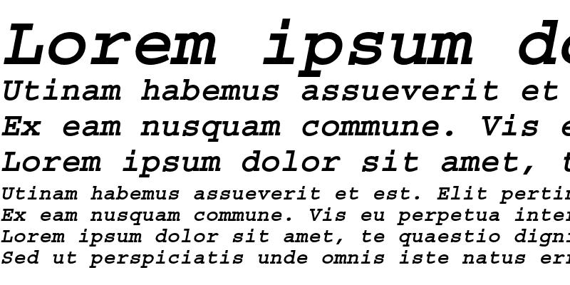 Sample of Courier Bold Oblique