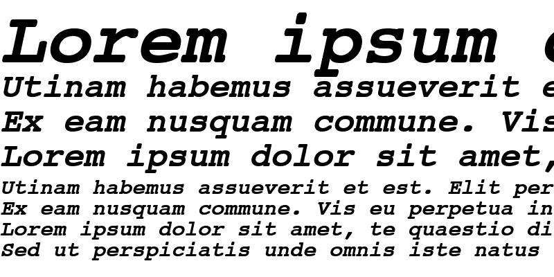 Sample of Courier BoldItalic
