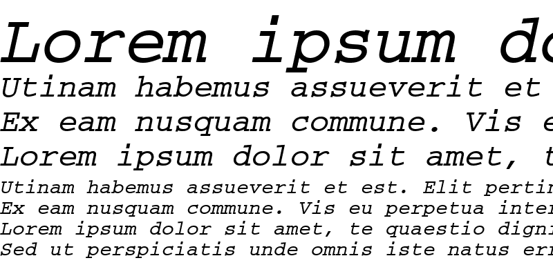 Sample of CourierM Bold Oblique