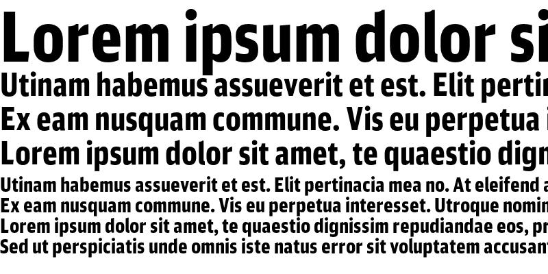 Sample of DB Sans Comp Altern Black