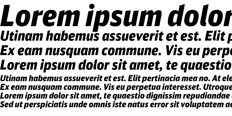 Sample of DB Sans Cond Altern Black Italic