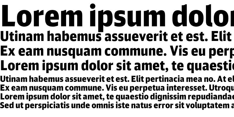 Sample of DB Sans Cond Altern Black