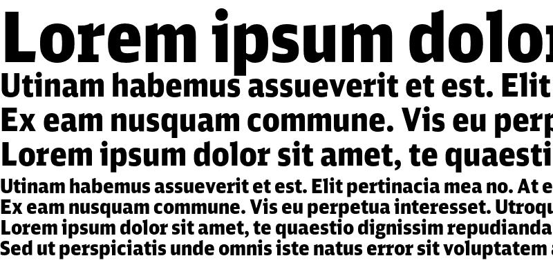 Sample of DB Sans Cond Black