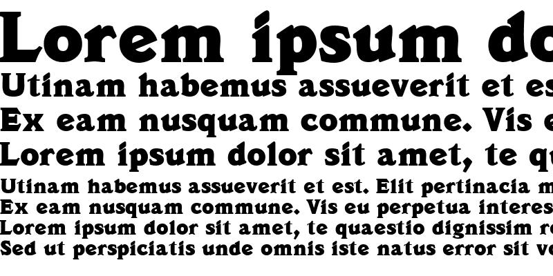 Sample of DecusSSK