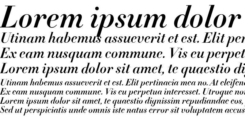 Sample of Didot Bold Italic