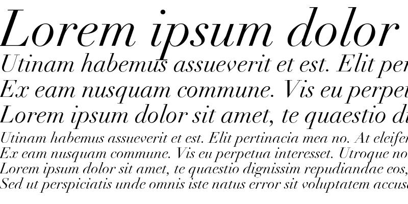 Sample of Didot Italic