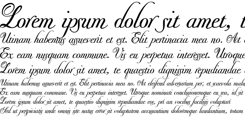 Sample of Donna Bodoni Aa Script Regular