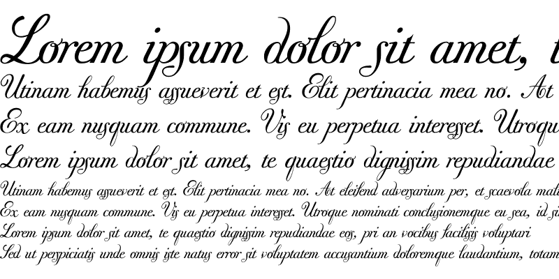Sample of Donna Bodoni Ce Script Regular