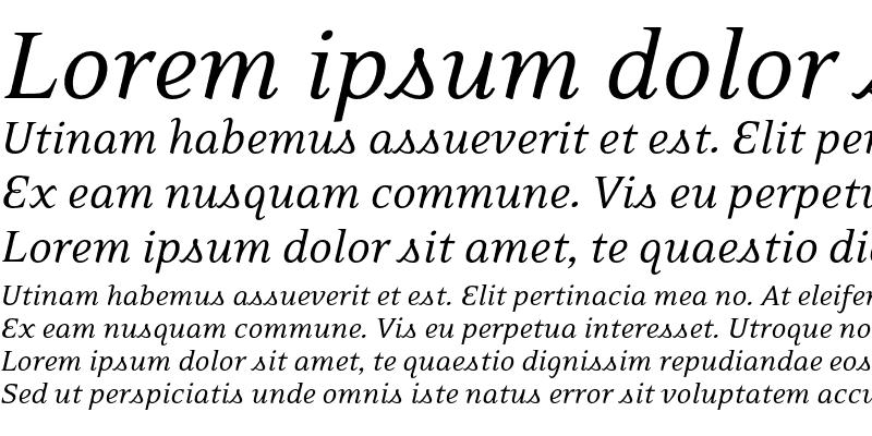 Sample of EideticNeo Italic