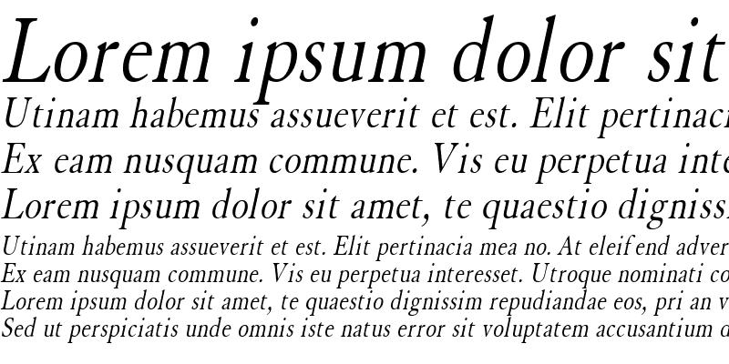 Sample of Elephant Condensed Italic