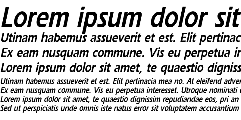Sample of ErgoeCondensed Bold Italic