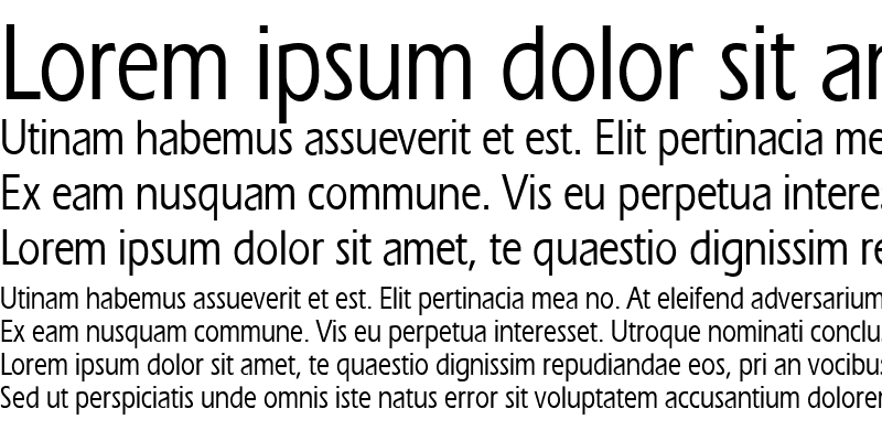 Sample of ErgoeMediumCondensed