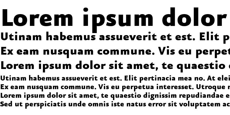 Sample of Eureka Sans Black Regular