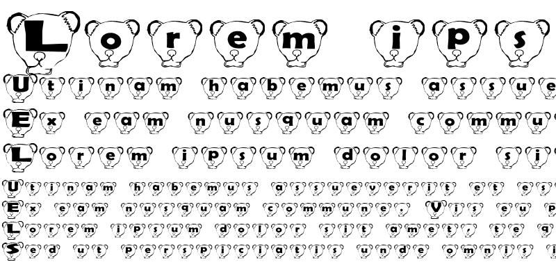 Sample of Ferret Head
