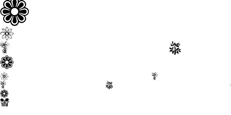 Sample of flowers_csp