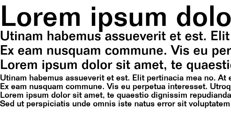 Sample of Folio-Medium