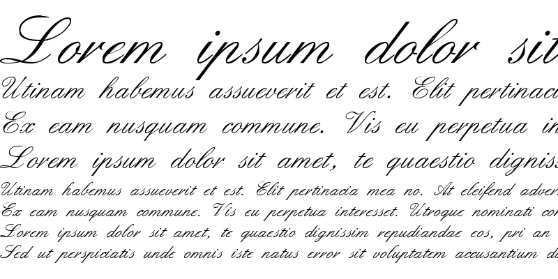 Sample of Formal Script